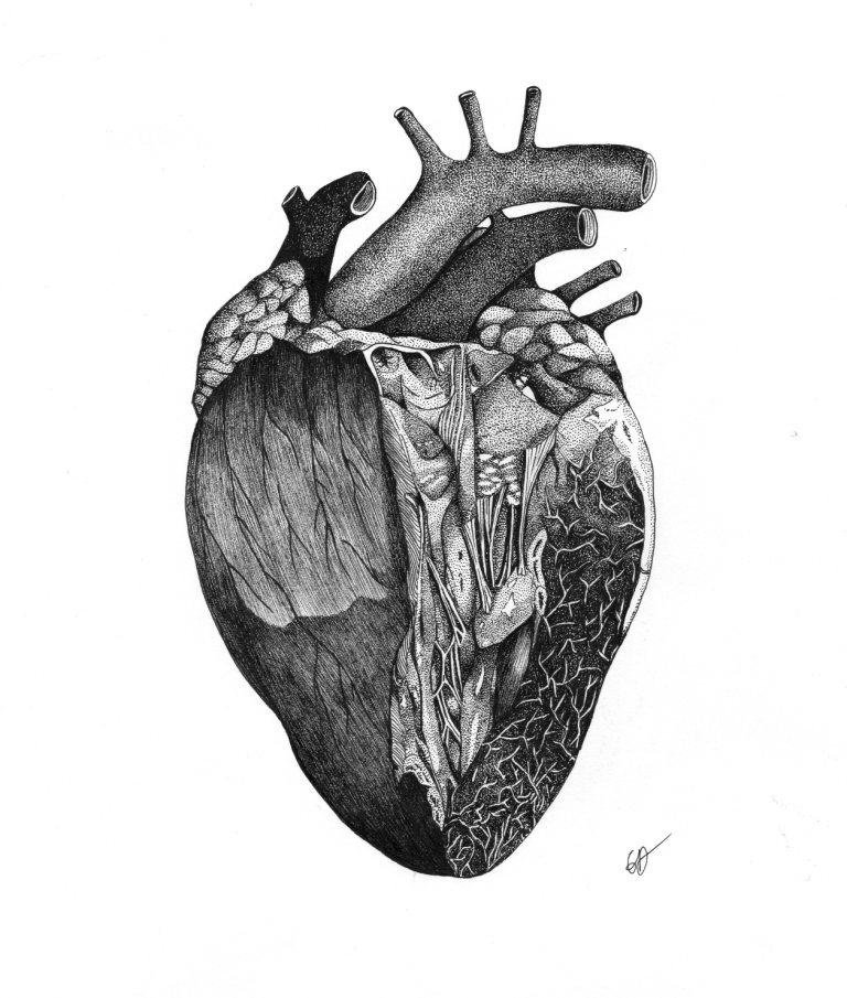 A coeur ouvert - Encre de Chine - ORIGINAL VENDU - Tirages