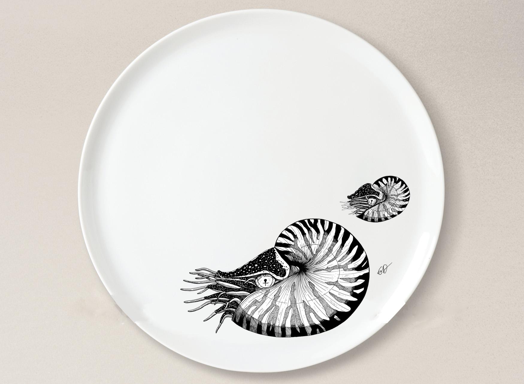 Assiette nautiles 8