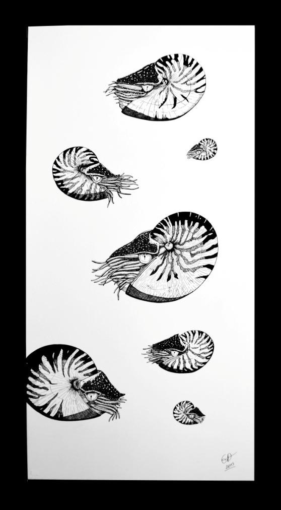 Emilie biens nautiles acrylique sur toile 60x120 copie 1
