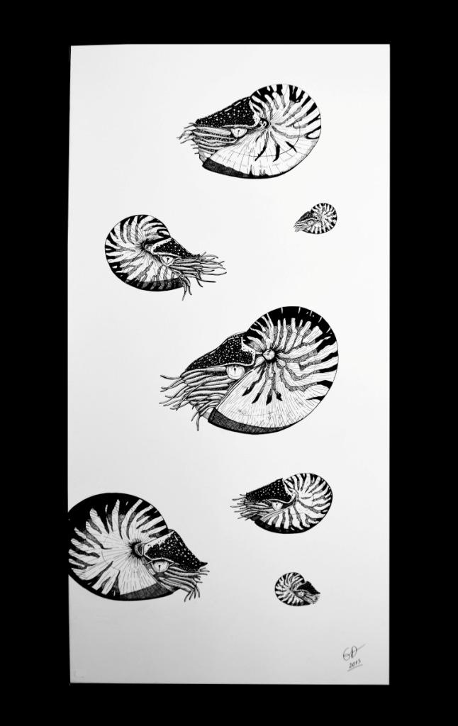 Emilie biens nautiles acrylique sur toile 60x120 copie