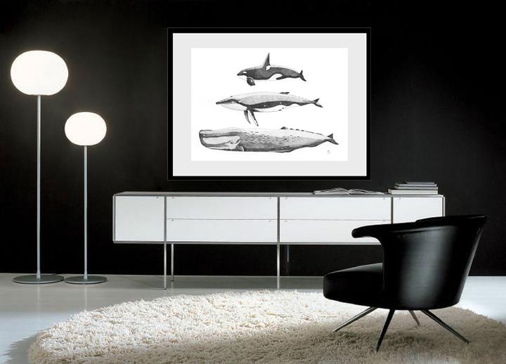 Simulation baleines modifie 1